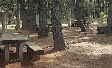 Parchi e Spiagge con Aree Picnic e Barbecue